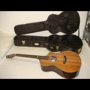 East Indian Rosewood Electric Acoustic Guitar