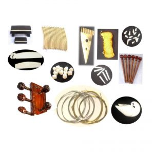 Professional Set Of Sitar Accessories